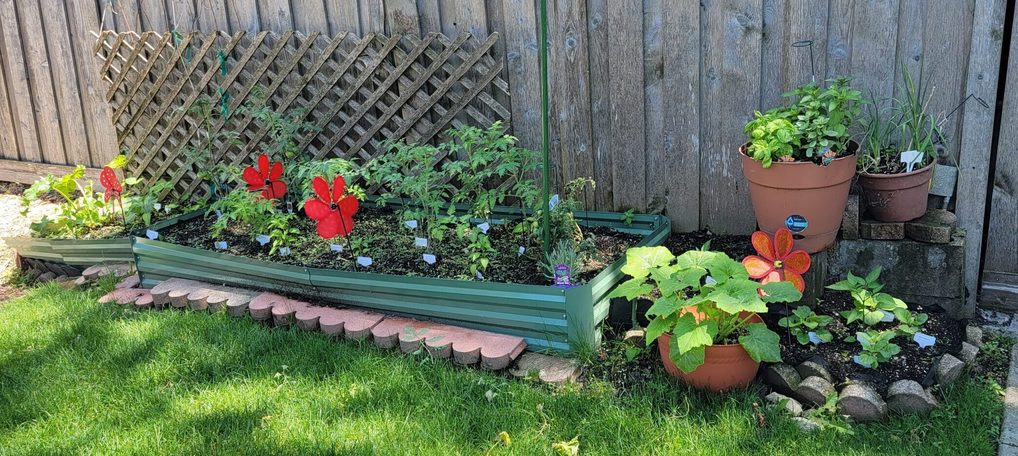 This is what the Optimistic Garden looks like today.