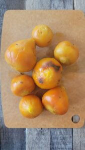 Peeled Golden Beets